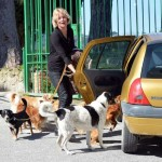 Flavia Vento, dog sitter part time nel parco di Roma